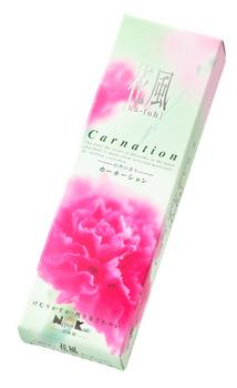 20120418kahu-carnation.jpg